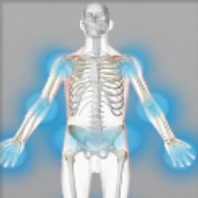 Rhumatismes, arthrose (gélules) BIO