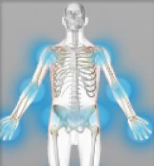 Rhumatismes, arthrose (gélules)