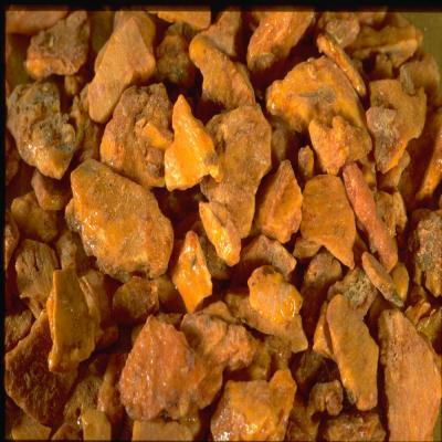 HUILE ESSENTIELLE de benjoin de sumatra BIO