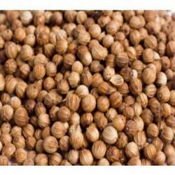 GÉLULES de Coriandre 250 mg