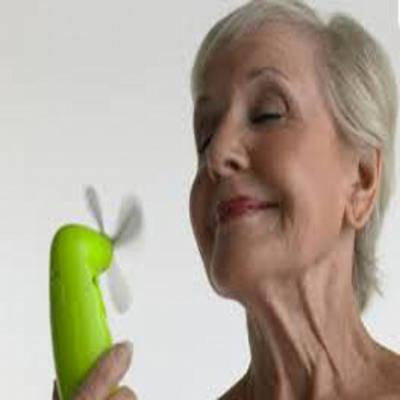 Ménopause (gélules) BIO